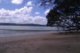 Auckland beach 2