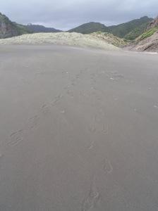 Karekare beach (2)