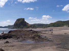Piha Beach (3)