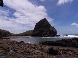 Piha Beach (4)