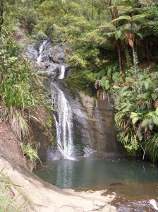 Waitakere Ranges - Fairy Falls (2)