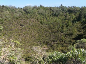 Rangitoto crater